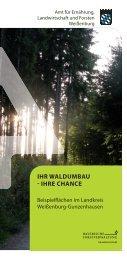 Beispielflächen Waldumbau - Amt für Ernährung, Landwirtschaft und ...