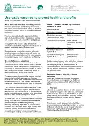 Cattle vaccines - Agric.wa.gov.au