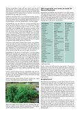 Growing vegetables and herbs in home gardens in Western Australia - Page 2
