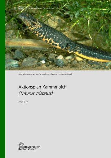 Aktionsplan Kammmolch - Amt für Landschaft und Natur - Kanton ...