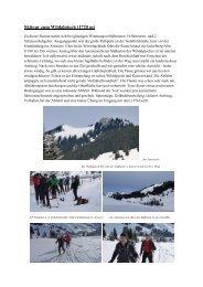 Skitour zum Wildalpjoch (1720 m)