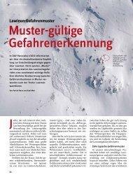 Panorama 2 2012 Sicherheitsforschung: Lawinen-Gefahrenmuster