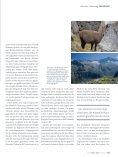 der Adamello-höhenweg - Seite 2