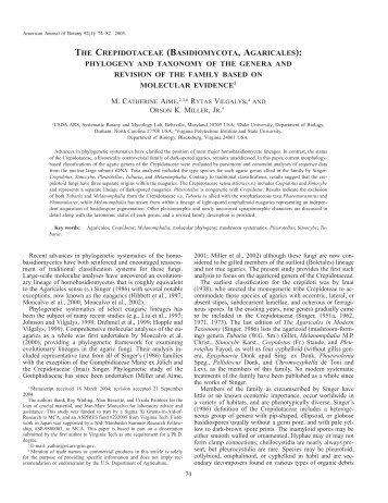 the crepidotaceae (basidiomycota, agaricales) - American Journal of ...