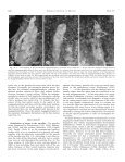 megagametophyte development in potentilla nivea (rosaceae) - Page 5