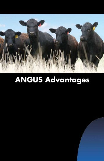 ANGUS Advantages - American Angus Association