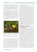Umsetzung eines landesweiten floristischen Artenhilfsprogramms ... - Seite 2