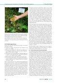 Umsetzung eines landesweiten floristischen Artenhilfsprogramms ... - Seite 7