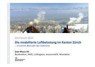 Die modellierte Luftbelastung im Kanton Zürich