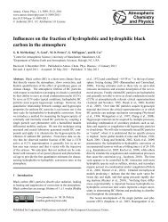Influences on the fraction of hydrophobic and hydrophilic black ...