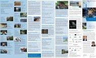 Flyer Augsburger Wassertage - UNESCO 28stg 09-2013_Wasser ...