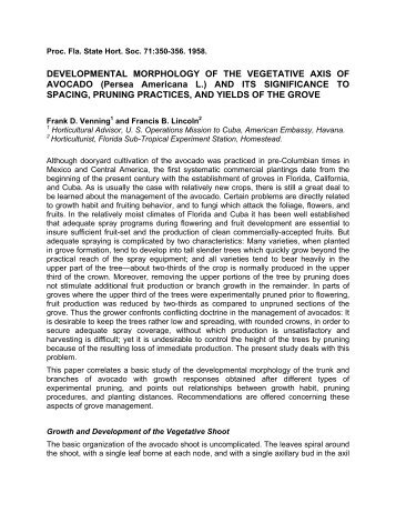 Full Text in PDF - Avocadosource.com