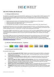 Methodik Multimedia-Reichweite DIE WELT - Axel Springer MediaPilot