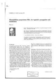 Rhamphidium purpuratum Mitt.: its vegetative propagation and