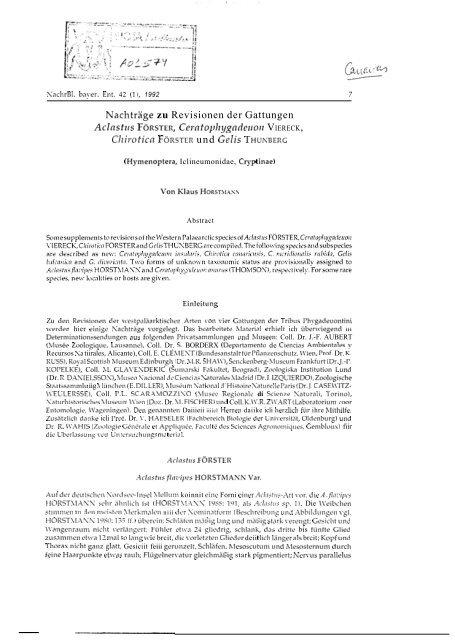Horstmann, K. (1993). Nachtrage zu Revisionen der Gattungen ...
