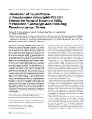 Introduction of the phzH Gene of Pseudomonas chlororaphis ...