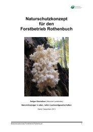 Naturschutzkonzept für den Forstbetrieb Rothenbuch - Bayerische ...