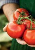 Gemüsebau- katalog - BayWa AG - Seite 4