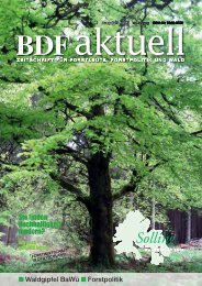 Ausgabe 05/2013 - BDF