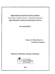 PDF - Universidad Nacional de Colombia