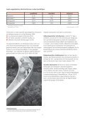 Familienbewusste Schichtarbeit - Beruf & Familie gGmbH - Seite 5