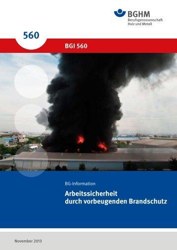 BGI 560 02.pdf, Seiten 20-38 - Berufsgenossenschaft Holz und Metall