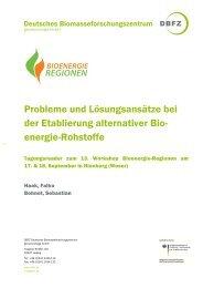 Tagungsreader 13. Workshop BER - Bioenergie-Regionen