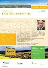 Themenbrief - Bioenergie-Regionen 01/2013