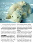 Polar Bears Still On Thin Ice - Center for Biological Diversity - Page 3