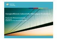 Energieeffiziente, industrielle Produktion von Mikroalgen_Dr. K ...