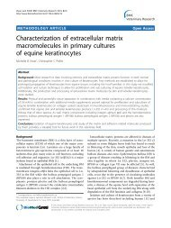 Characterization of extracellular matrix ... - BioMed Central