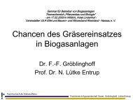 Chancen des Gräsereinsatzes in Biogasanlagen - Biores