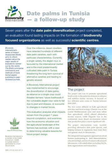 Date palms in Tunisia — a follow-up study - Bioversity International
