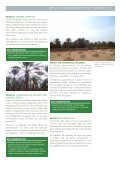 Date palms in Tunisia — a follow-up study - Bioversity International - Page 3