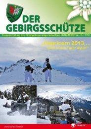 """""""Capricorn 2013,... - Österreichs Bundesheer"""