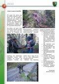 Truppenzeitung des Hochgebirgs-Jägerbataillons 26 Spittal/Drau ... - Page 6