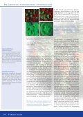 Der Austausch von Informationen ist nicht nur ... - Naturstoff-Forschung - Seite 3