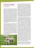 als PDF-Datei - Bonifatiuswerk - Seite 4