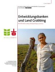 Entwicklungsbanken und Land Grabbing - Brot für alle