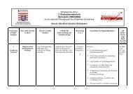 + 3. Evaluationsbericht (Schuljahr 2008/2009) - Berufliche Schulen ...