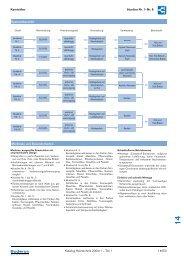 Kaminöfen blueline Nr. 1–Nr. 8 Katalog Heiztechnik 2004 ... - Buderus