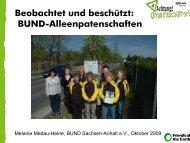 Beobachtet und beschützt: BUND-Alleenpatenschaften