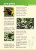 BN informiert: Der Wildgarten - Bund Naturschutz in Bayern eV - Seite 4