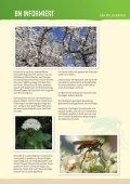 BN informiert: Der Wildgarten - Bund Naturschutz in Bayern eV - Seite 5
