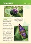 BN informiert: Der Wildgarten - Bund Naturschutz in Bayern eV - Seite 6