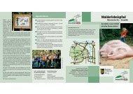 Erlebnispfad im Wald rund um das Hofgut Neumühle bei ...