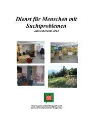 Bericht Suchtbereich - Jahr 2012 - Bezirksgemeinschaft ...