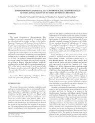 GNOMONIOPSIS CASTANEA sp. nov. (GNOMONIACEAE ...