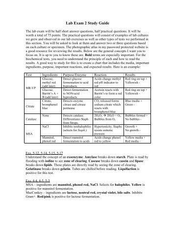 exam p study guide pdf