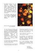 freundeskreis echinopseen - Page 4